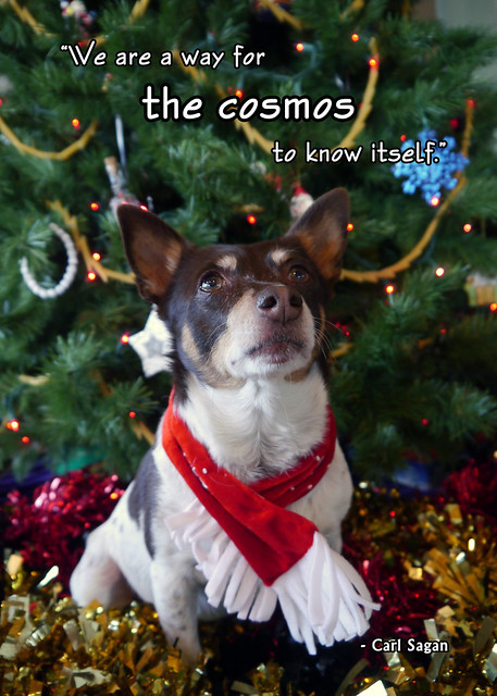 2012 Holiday Card - Outtakes (Rennie)