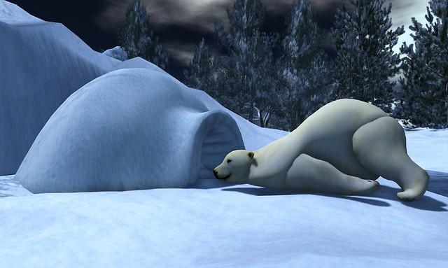 The North Pole Slight Ride Adventure - 02