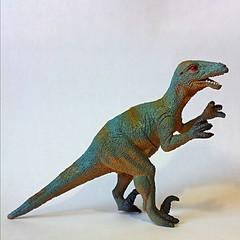 animal figure, velociraptor, tyrannosaurus, fauna, dinosaur,