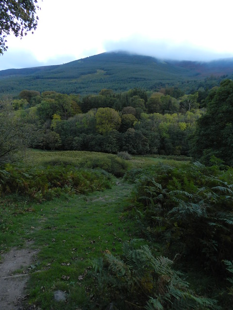 Lackandarragh in late September 2011