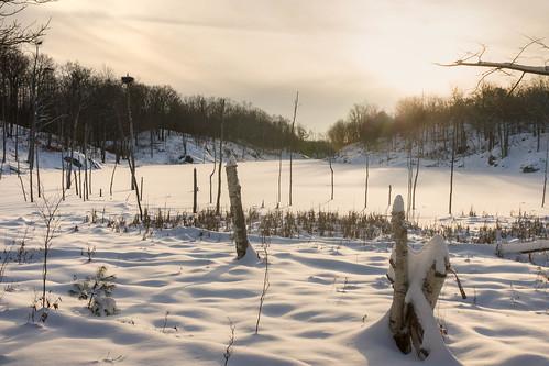 sunset snow ontario canada swamp perthroad