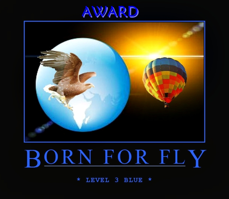 bornlevel3iaward