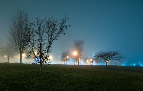 Devonian Harbour Park, foggy
