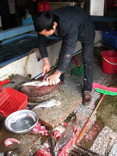 china fish markets sichuan cleavers yibin nananindoormarket