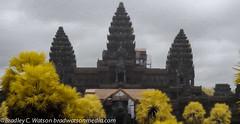 Angkor Wat Through the Mist