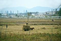 Skyline of Chongjin