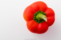 Bell pepper also known as sweet pepper, pepper or…