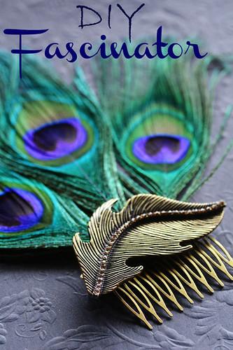 peacock-hair-combtxt2s