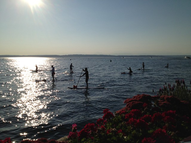 Paddle boarders on Shilshole Bay