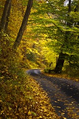 country lane - Delaware Water Gap - 10-20-12  01