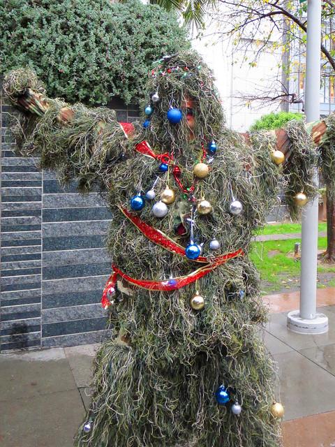 Human Christmas Tree Flickr Photo Sharing
