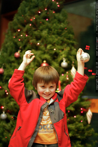 dancing under the disco ball ornament    MG 0531