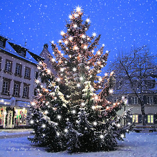 Merry Christmas to you! Fröhliche Weihnacht!