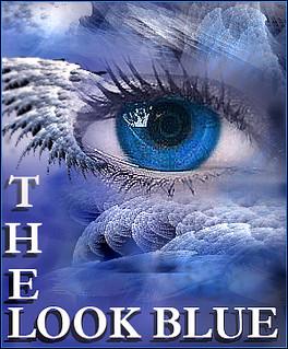 0001 the look fThe look blue colection - Diaz de vivar gustavo