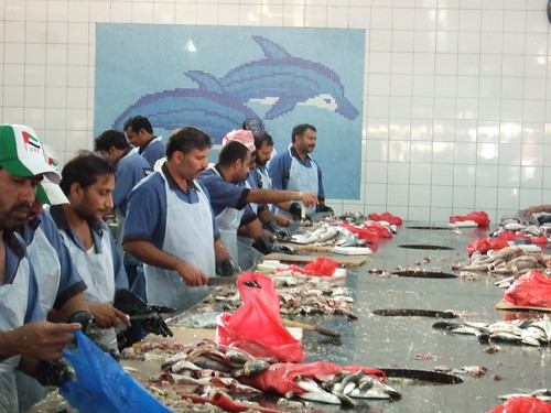 Dubai Fish Market in Deira