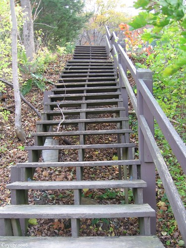 Canoe landing stairs, looking up by Coyoty