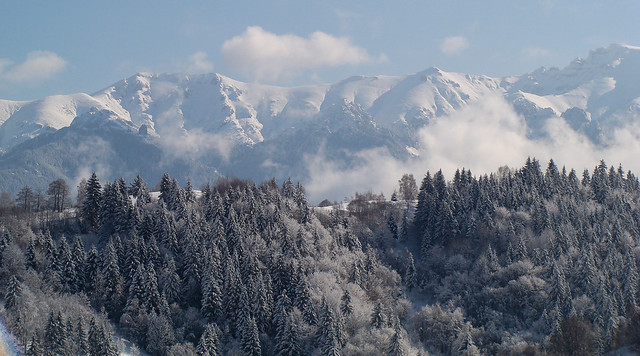 Carpathian mountains - Transylvania