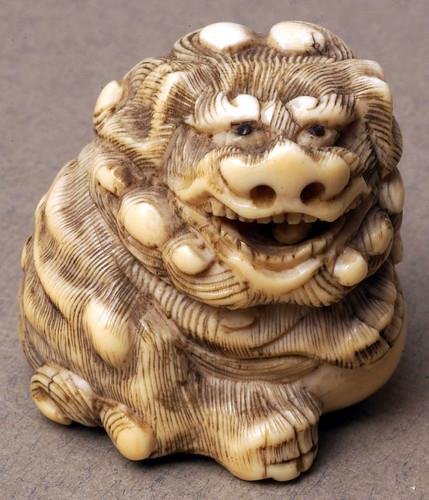 001- Shishi  león guardián chino esculpido en marfil-Bolton Museum and Archive Service