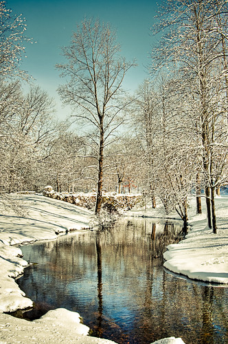 Snow by Jerri Moon Cantone via I {heart} Rhody