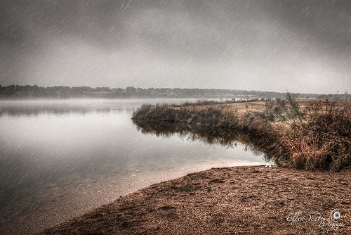 winter usa water rain weather fog austin river landscape photography ellen day texas picture raining brushcreek yeates cedarpark ellenyeates