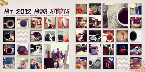 My 2012 Mug Shots