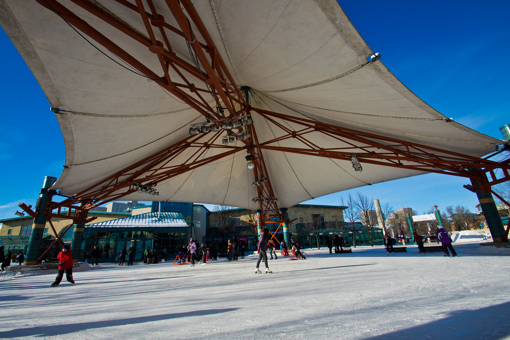 The Canopy at the Forks