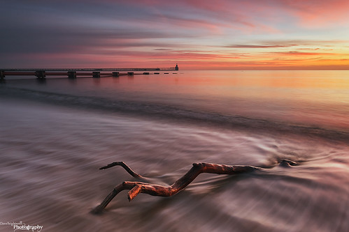 The Pier, The Pipe And The Branch by Dave Brightwell