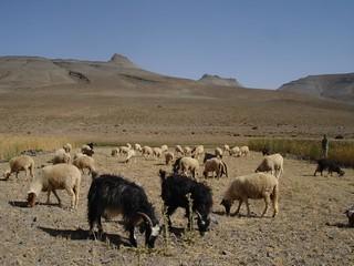 Agoudal Marrocos
