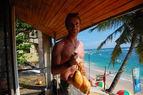 king coconuts sri lanka
