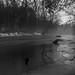 Bronte Creek in Lowville by Gregory Pleau