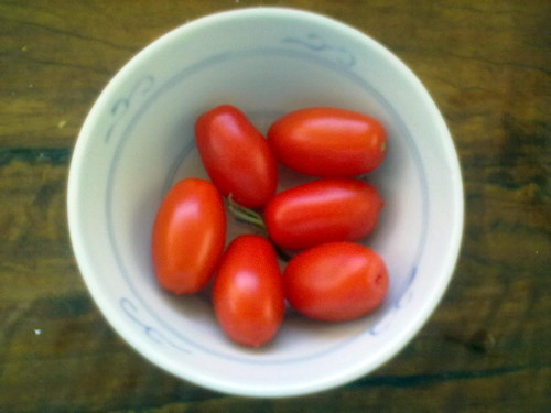 Home grown sweet tomatoes