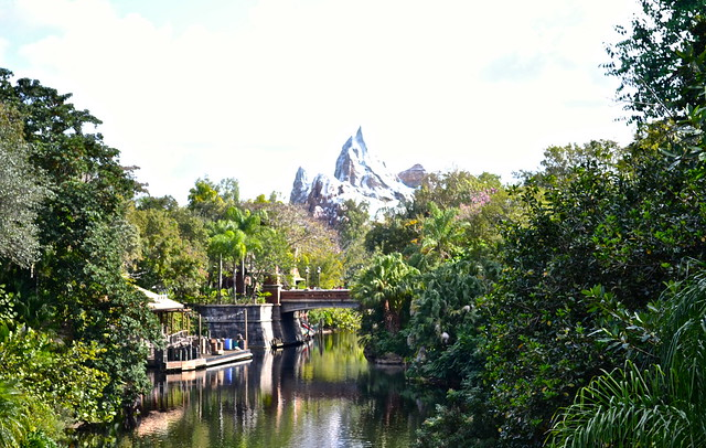 mount everest - animal kingdom - disney world