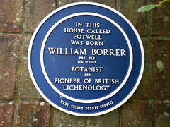 Photo of William Borrer blue plaque