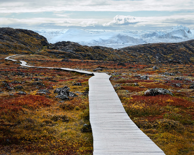Path to the Icefield