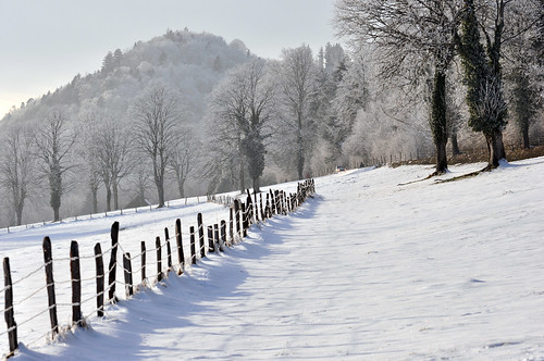 winter snow nature forest landscape switzerland frost country jura delémont