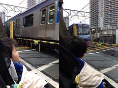 踏切で電車みる 2013/2/2