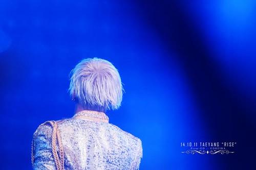 Taeyang-RISESeoul-day2-20141011_0_10