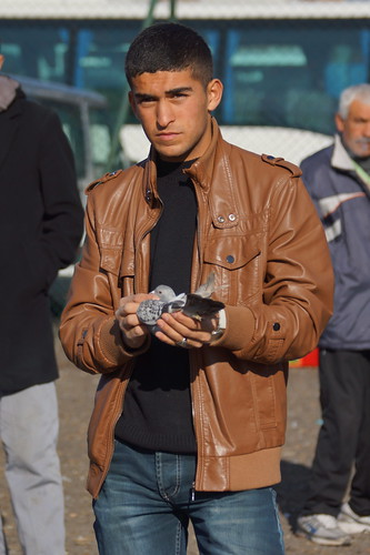 Young man at the pigeon market in Istanbul today by CharlesFred