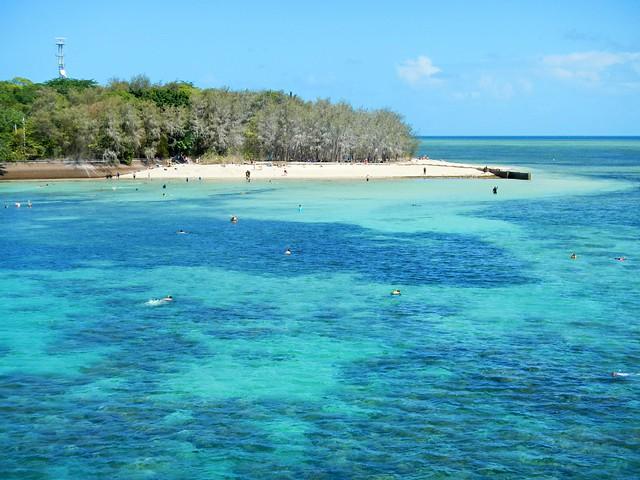 Snorkelling at Green Island