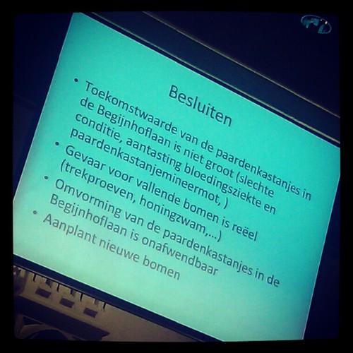 Laatste punt op de openbare agenda #begijnhoflaan