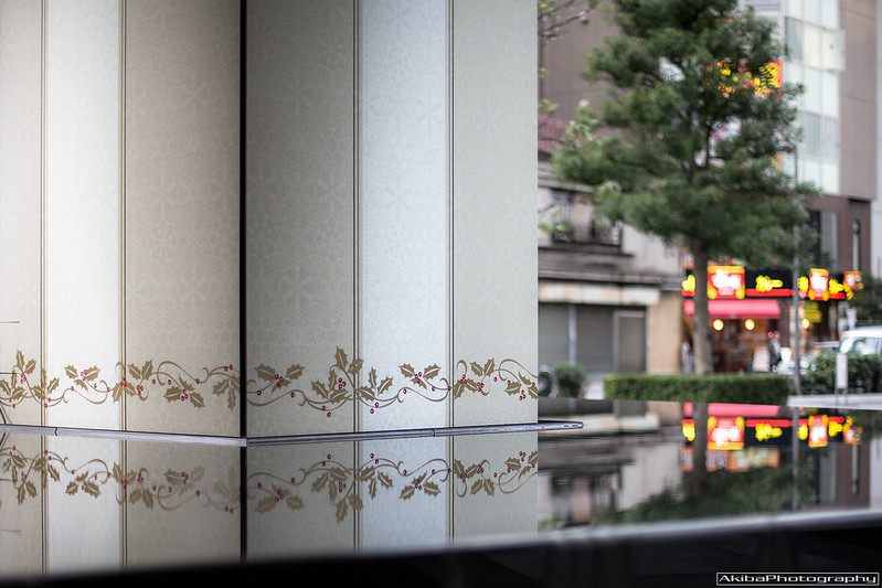 AkibaPhotography0035