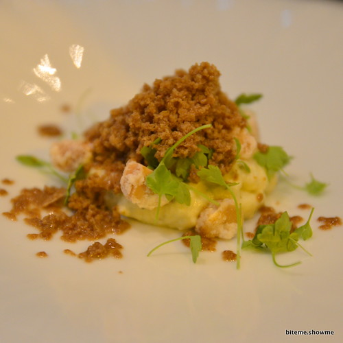 Sepia - Saint Agur and Mascarpone cheese, crystallised macadamia, celery cress, roasted chicory granita