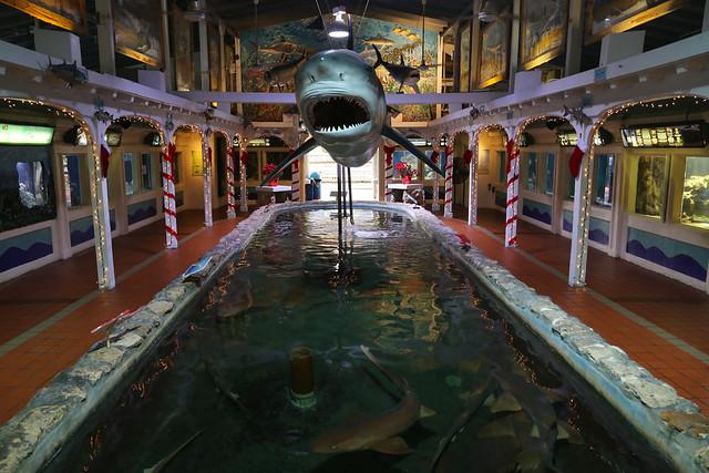 Key West Aquarium Flickr Photo Sharing