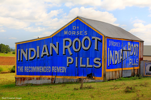 Dr Morse's Indian Root Pills Sign - Raworth, Morpeth Road, NSW