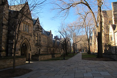 Yale in New Haven