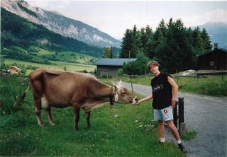 Cow Paul Hancock Schweiz
