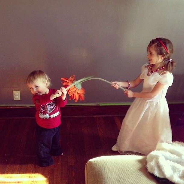 Flower light saber battle.