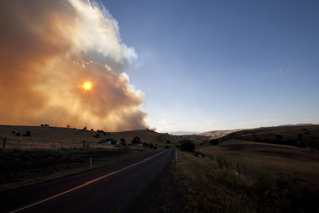 Bushfire rage