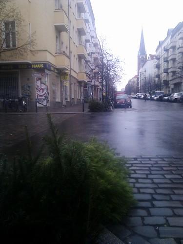 aggro_tannen