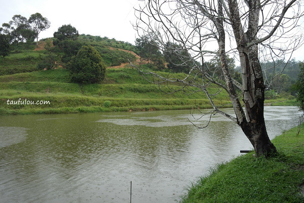 Dusun (16)